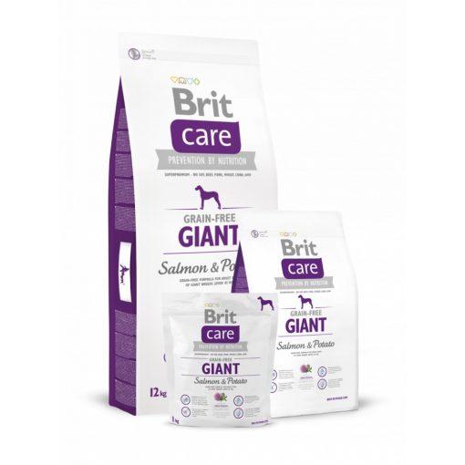 Brit-Care-Adult-Giant-Salmon-Potato-Grain-Free 12 kg